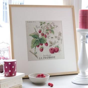 Linen « Rapsberry » study (maxi pattern)