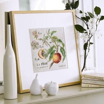 Linen « Peach » study (maxi-pattern)