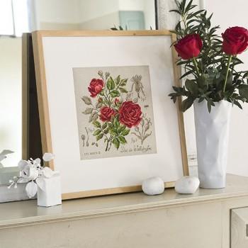 Linen rose study « Duc de Wellington » (maxi-pattern)