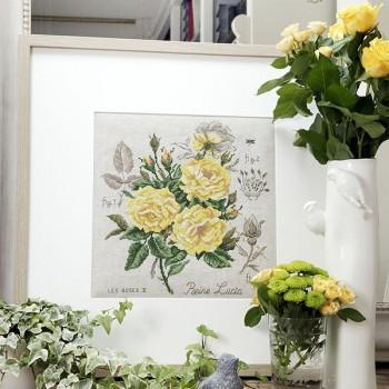 Linen rose study «Reine Lucia» Maxi-Pattern