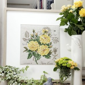 Aïda : rose study «Reine Lucia» Maxi-Pattern