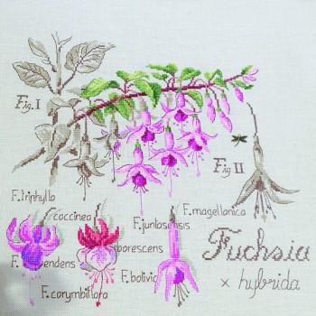 Aïda : Étude au Fuchsia (maxi-grille) à broder au point de croix