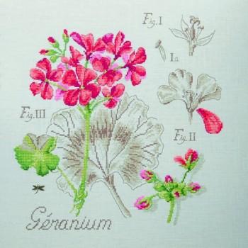 Aïda : Geranium Study (maxi-pattern)