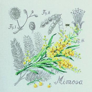 Aïda : Étude au Mimosa (maxi-grille) à broder au point de croix
